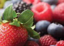 Коллоидные ингредиенты для долгой жизни