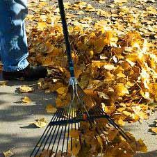 Вебинар AD Medicine: «Очистите организма и... летите!», 28.11.2012