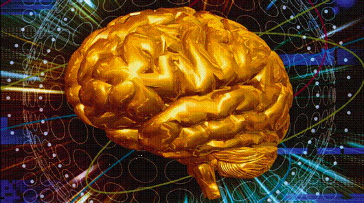 Как помочь мозгу