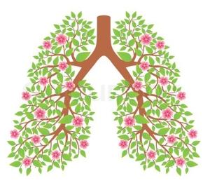 Рекомендации при бронхиальной астме, по образу жизни и питанию