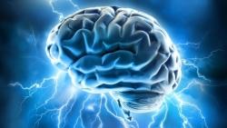 Как спасти мозги. 9 простых правил