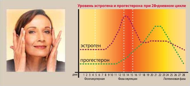 Уровень эстрогена и прогестерона при 28-дневном цикле