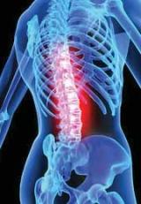 Применение средств природного происхождения для профилактики и преодоления заболеваний суставов