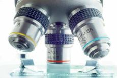 Преимущества коллоидных фитоформул перед другими формами препаратов