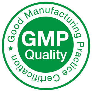 Международный стандарт GMP