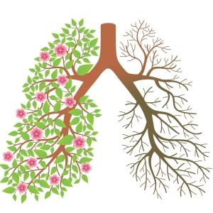 Дышать – значит жить