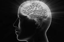 Нервные клетки — восстанавливаются!
