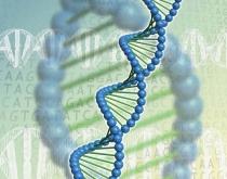 АнгиОмега Комплекс - перспективное гипохолестеринемическое средство на основе фитонутриента поликосанола