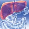 Комплементарная терапия хронического гепатита