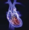 Профилактика ишемической болезни сердца: взгляд нутрициолога