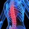 Профилактика и преодоление заболеваний опорно-двигательного аппарата