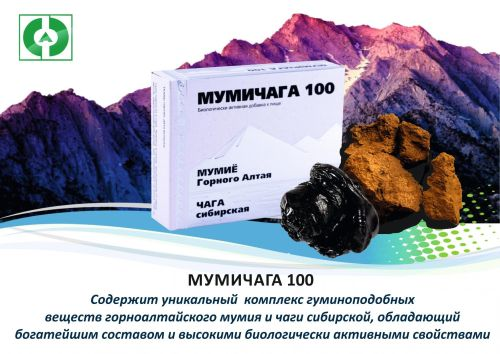Мумичага 100 при онкологических заболеваниях