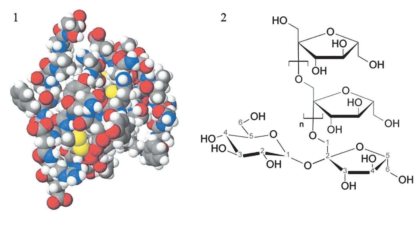 Рис. 4. Пространственная модель инулина (1) и его структурная формула (2)