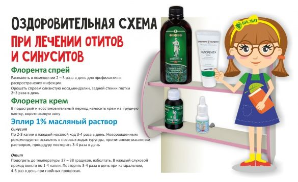 Здоровые ушки и носик. Оздоровительная схема при лечении отитов и синуситов от компании «Биолит»
