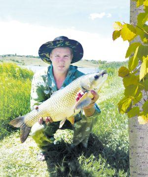 Водный экстракт коры осины –Экорсол и Популин в борьбе с описторхозом