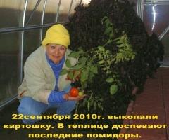 Лучший опыт применения ЭМ-технологии 2010