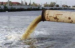 Влияние микробиологического препарата «Байкал ЭМ1» на микробиологические, паразитологические и санитарно-гигиенические показатели осадков городских сточных вод