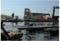 Ремедиация нефтезагрязненных черноземных почв с помощью препарата «Байкал ЭМ1»