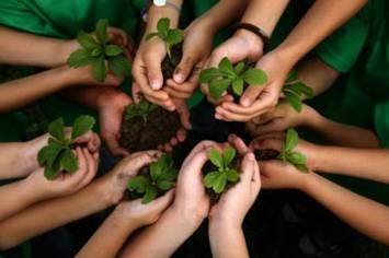 Роль гуминовых веществ в сохранении биосферы планеты