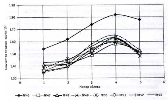 Динамика изменения количества личинок карпа чешуйчатого в ходе эксперимента
