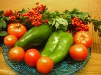 Выращивание томатов по ЭМ-технологии: опыт огородника