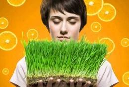 Эмикс сухая подкормка для растений – маркетинговые преимущества