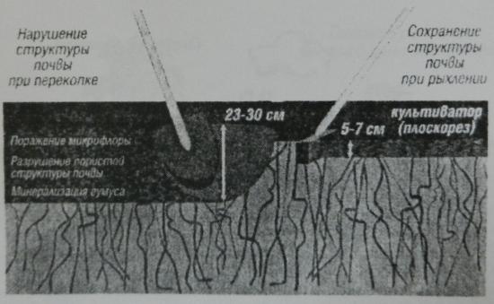 Рисунок 4. Структуры почвы при механической обработке