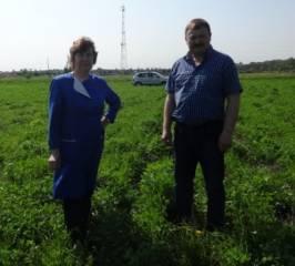 ЭМ-технология при выращивании сена