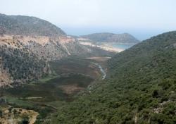 Применение микробиологического препарата «Байкал ЭМ1» в условиях Турции и Азербайджана