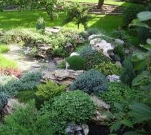 Выращивание цветов, декоративных растений и травяного покрова с помощью ЭМ-технологии