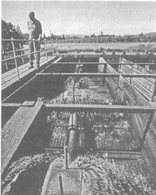Результаты применения эффективных микроорганизмов при очистке стоков и переработке отходов животноводческих ферм в Новой Зеландии