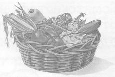 К изучению свойств препарата «Байкал ЭМ-1» в условиях мелкоделяночного растениеводства