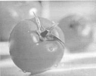 Овощи и ЭМ-технология