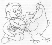 Использование ЭМ-технологии птицеводстве