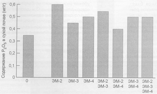 Действие различных ЭМ-препаратов на содержание Р2O5