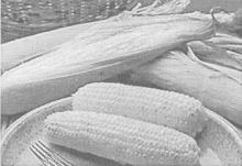 Влияние ЭМ на питательную ценность кукурузного силоса