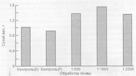 Воздействие лактобактерий на сухой вес урожая корнеплодов редиса