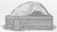 Выращивание капусты с применением ЭМ-технологии