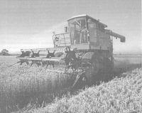 «Байкал ЭМ-1-У» при выращивании озимой пшеницы в условиях Харьковщины