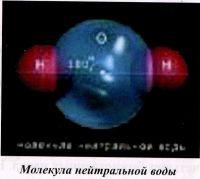 Молекула нейтральной воды