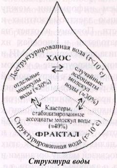 Структура воды