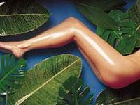 Гирудотерапия-новое слово в борьбе с целлюлитом