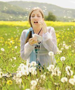 Лето, аллергия, поллиноз… Что делать?