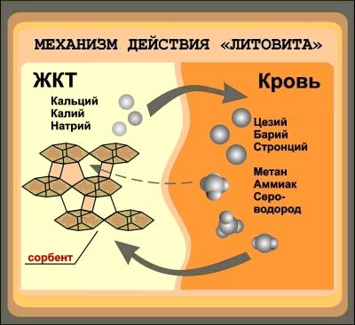 Механизм действия Литовита