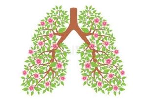 Литовит-М при аллергических состояниях, бронхиальной астме