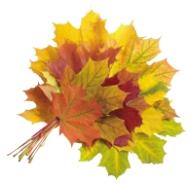 Осень – здоровье приносит