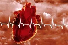 Значение минерального обмена в профилактике сердечно-сосудистых заболеваний