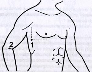 Точки и зоны приложения мячика игольчатого на туловище при различных заболеваниях и состояниях