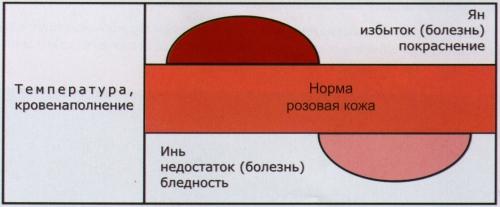 Основы рефлекторной диагностики