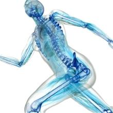 Заболевания и повреждения опорно-двигательного аппарата
